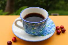 Café Finca la Manchuria